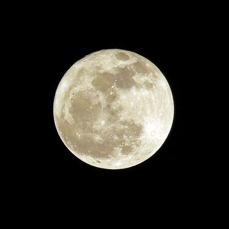 月光浴(変換後))