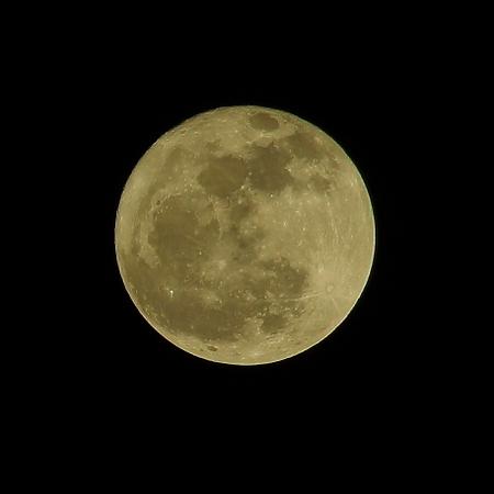 月光浴(変換前)
