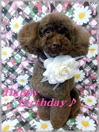 Happy Birthday☆(変換後))