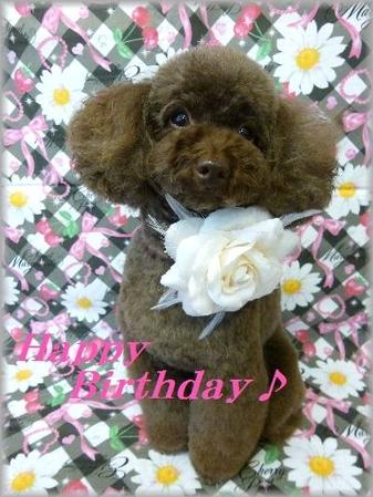 Happy Birthday☆(変換前)